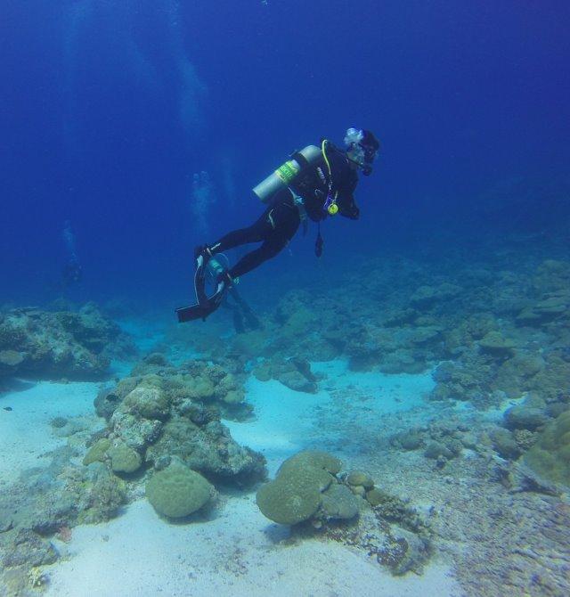 PADI OWC Scuba Diving Sabah